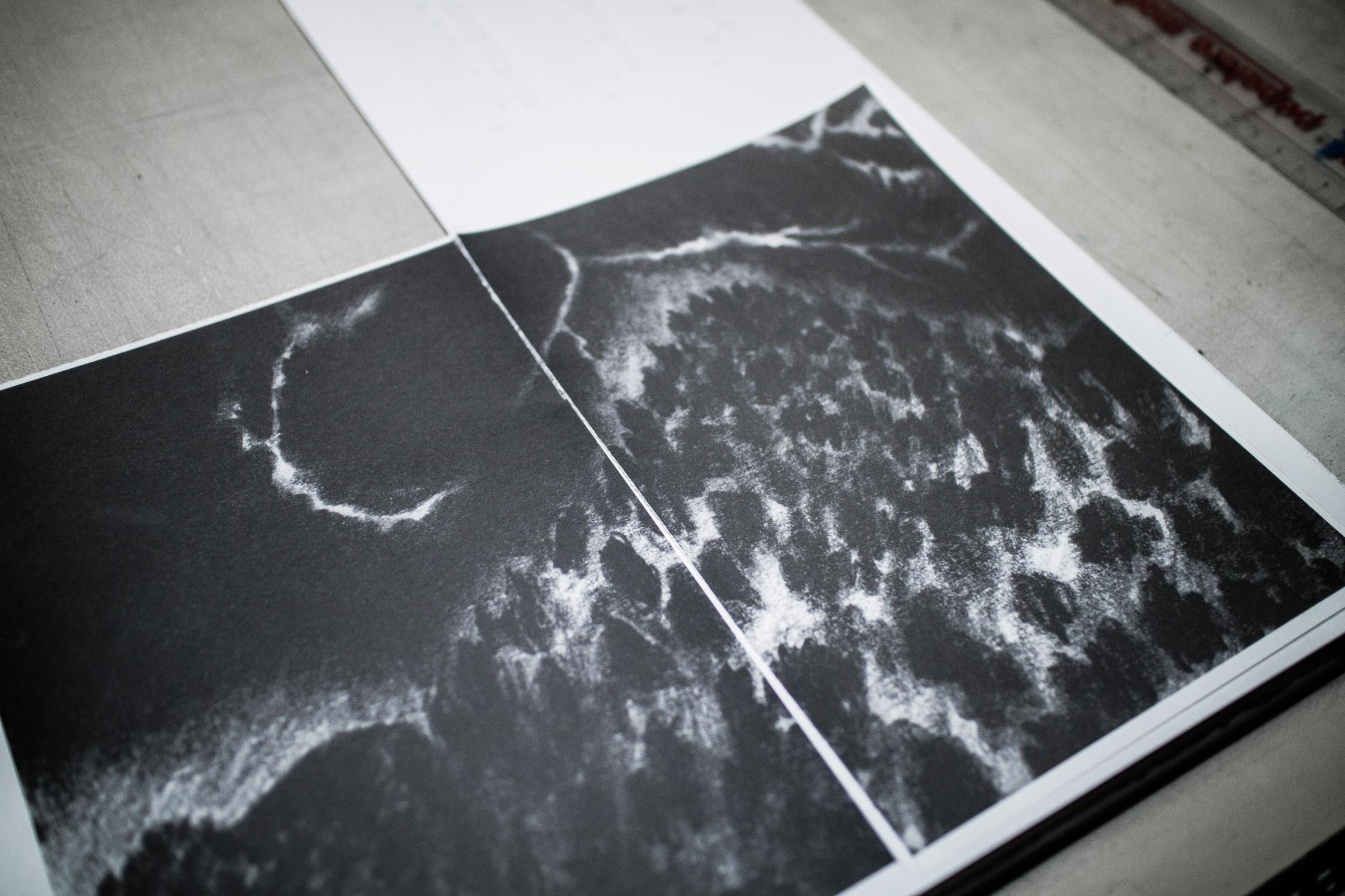 proceso de impresión offset de la agenda Bosque