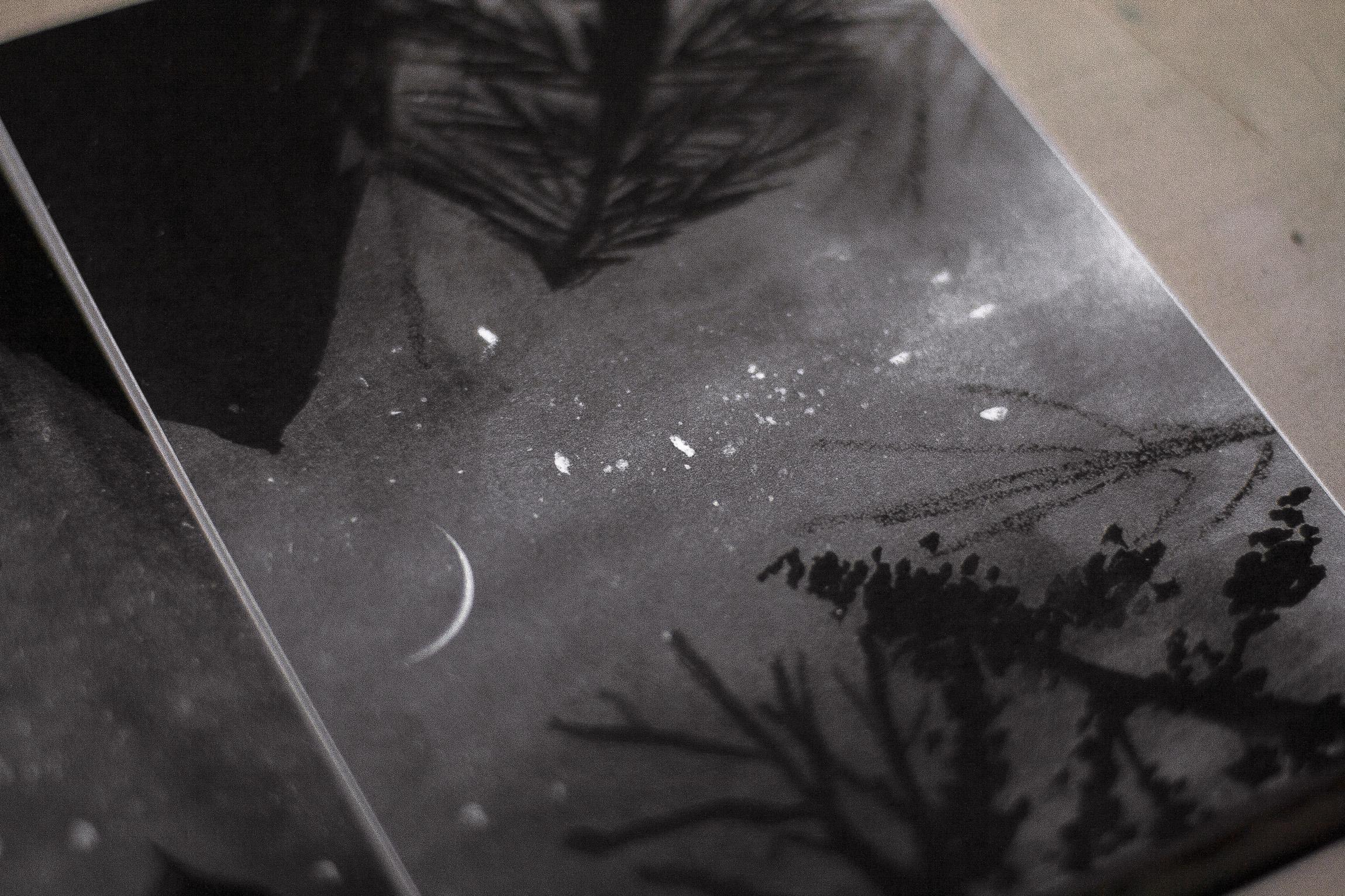 Páginas interiores de la agenda Bosque - impresión ecológica